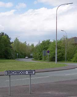 A Birchwood Way street sign