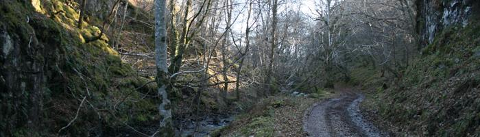 A section of Telford's Road alongside the Brunery Burn near Arisaig. Click to enlarge