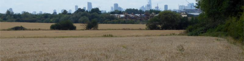 Looking west from the A1112 Romford Road towards the City and Docklands. The M12 would have filled this view, approaching from the far distance. Click to enlarge